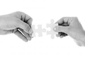 Client Partnership